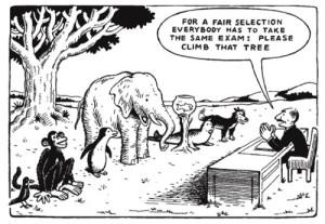 standardizedanimals