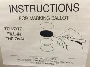 ballot-instructions